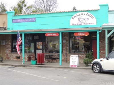 Lake County Commercial For Sale: 9453 Main Street