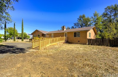 Clearlake Single Family Home For Sale: 14932 Burns Valley Road