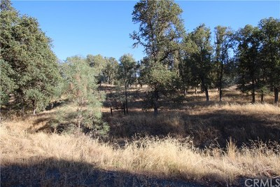Lower Lake Residential Lots & Land For Sale: 15847 Joseph Trail