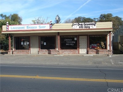 Lake County Commercial Active Under Contract: 14550 Lakeshore Drive