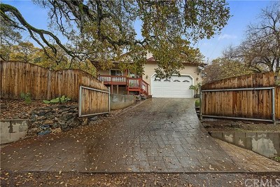 Clearlake Single Family Home For Sale: 12738 Oakgrove Avenue
