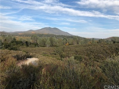 Kelseyville Residential Lots & Land For Sale: 4945 Cole Creek Road