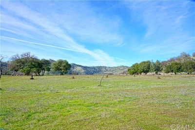 Clearlake Residential Lots & Land For Sale: 13440 Eastlake Drive