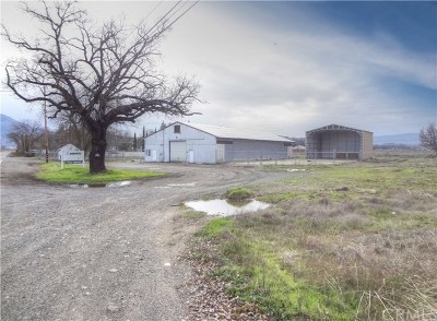 Lakeport Commercial For Sale: 2582 Argonaut Road
