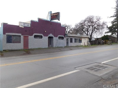Lake County Commercial For Sale: 14525 Lakeshore Drive