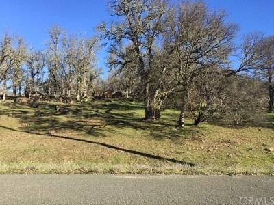Hidden Valley Lake Residential Lots & Land For Sale: 19582 Donkey Hill Road