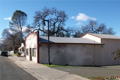 Lake County Commercial For Sale: 16120 Main Street