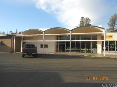 Lake County Commercial For Sale: 14060 Olympic Drive