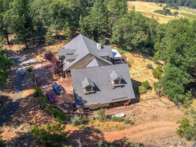 Kelseyville Single Family Home For Sale: 10230 Salmina Road
