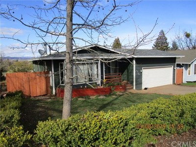 Kelseyville Single Family Home For Sale: 9404 Pawnee