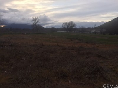 Clearlake Residential Lots & Land For Sale: 14885 Burns Valley Road