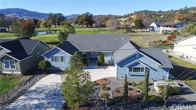 Lake County Single Family Home For Sale: 18960 Spyglass Road