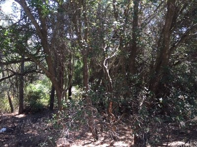 Clearlake Oaks Residential Lots & Land For Sale: 12409 Lakeview Drive