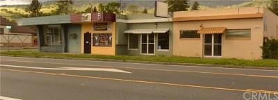 Lake County Commercial For Sale: 6140 E State Hwy 20