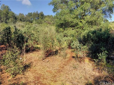 Clearlake Residential Lots & Land For Sale: 16035 10th Avenue