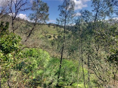 Clearlake Oaks Residential Lots & Land For Sale: 12225 Mountain View Drive