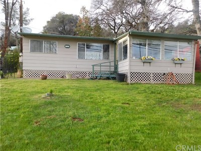 Clearlake Oaks Single Family Home For Sale: 11960 Widgeon Way