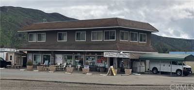 Clearlake Oaks Commercial For Sale: 1578 New Long Valley Road