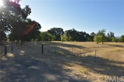 Kelseyville Residential Lots & Land For Sale: 5650 Kelsey Creek Drive