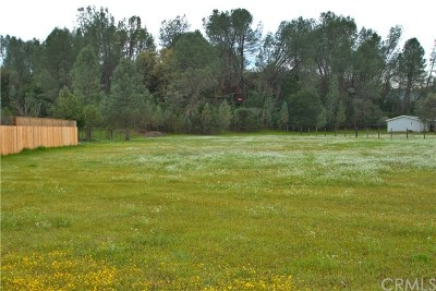 Clearlake Oaks Residential Lots & Land For Sale: 3025 Spring Valley Road
