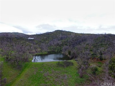 Lower Lake Residential Lots & Land For Sale: 10180 Rocky Creek Road