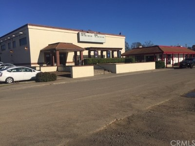 Lake County Commercial For Sale: 3386 Washington