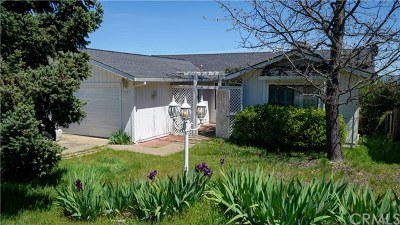 Kelseyville CA Single Family Home For Sale: $299,000
