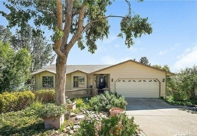 Kelseyville CA Single Family Home For Sale: $529,000