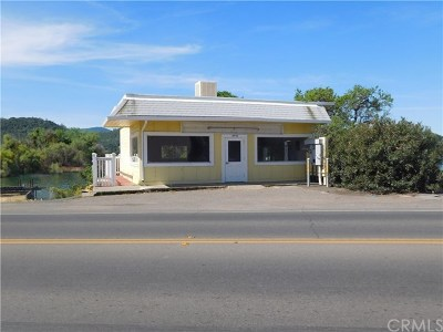 Lake County Commercial For Sale: 14445 Lakeshore Drive