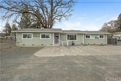 Lake County Commercial For Sale: 21036 Washington Street