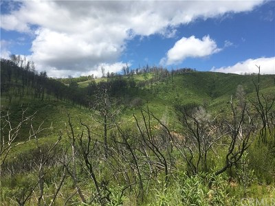 Lower Lake Residential Lots & Land For Sale: 22100 Morgan Valley Road