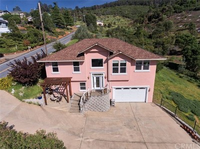 Kelseyville Single Family Home For Sale: 6855 Echo Drive
