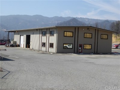 Lake County Commercial For Sale: 11735 Socrates Mine Road