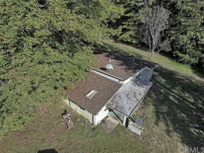 Ukiah Single Family Home For Sale: 19600 Orr Springs Road