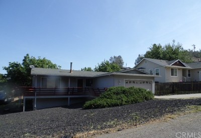 Kelseyville Single Family Home For Sale: 10018 El Capitan Way