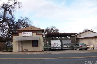 Lower Lake Commercial For Sale: 16120 Main Street