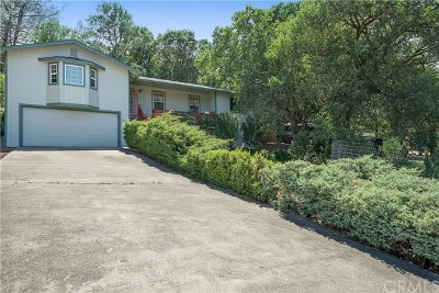 Hidden Valley Lake Single Family Home For Sale: 19557 Donkey Hill Road