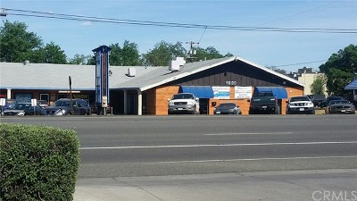 Lower Lake Commercial For Sale: 9800 State Hwy 53
