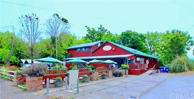 Lakeport Commercial For Sale: 1970 Big Valley Road