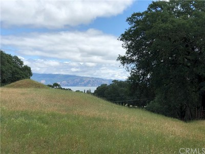 Lakeport CA Residential Lots & Land For Sale: $259,000