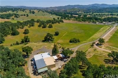 Lower Lake Commercial For Sale: 11171 S State Hwy 29