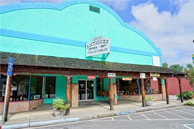 Upper Lake Commercial For Sale: 9495 Main Street