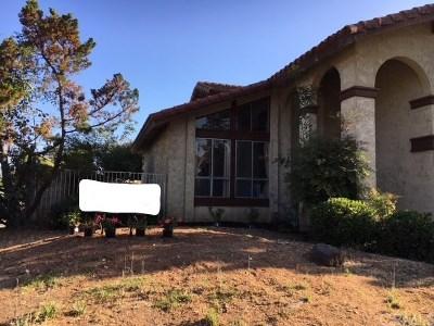 Placentia Single Family Home For Sale: 848 San Juan Lane