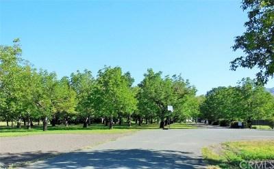 Upper Lake Residential Lots & Land For Sale: 10055 Hagemann Lane