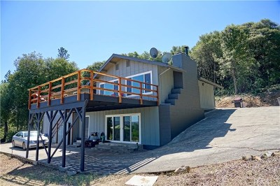 Kelseyville Single Family Home For Sale: 9145 Mombacho Road