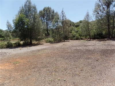 Kelseyville Commercial For Sale: 9710 Broadmoor Way