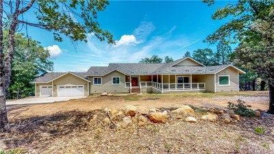 Kelseyville Single Family Home For Sale: 10550 Seigler Spring Road