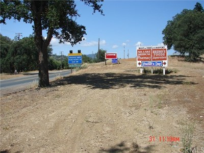 Lake County Commercial For Sale: 9570 Highway 29