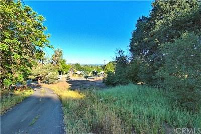 Kelseyville Residential Lots & Land For Sale: 5616 Main Street