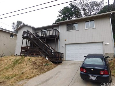 Clearlake Single Family Home For Sale: 14650 Uhl Avenue